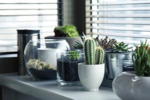 Recherche maison ou appartement à vendre à Eysines