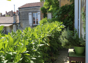 BORDEAUX TONDU Adorable T1 Bis avec Jardin et Balcon